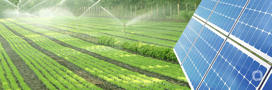 Positive Prospects For Solar Powered Irrigation Systems